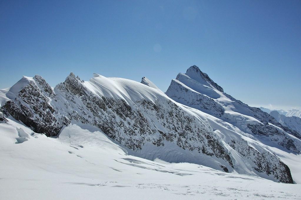 Finsteraarhorn Berner Alpen / Alpes bernoises Switzerland photo 06