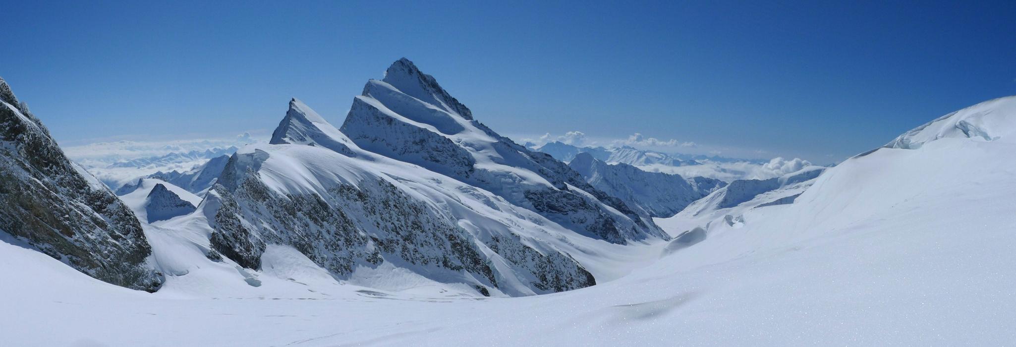 Finsteraarhorn Berner Alpen / Alpes bernoises Switzerland panorama 05