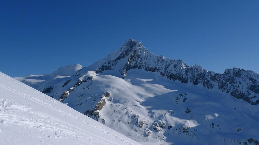 Finsteraarhorn Berner Alpen / Alpes bernoises Switzerland photo 03