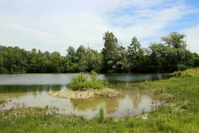 Isarmündungsgebiet IMG_5681