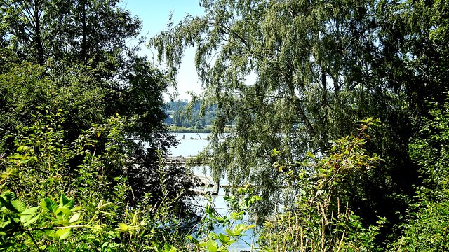 Hidden Fraser River