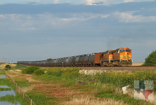 BNSF 4511 | by Nathan Herring