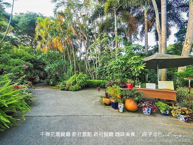 千樺花園餐廳 新社景點 新社餐廳 咖啡美食