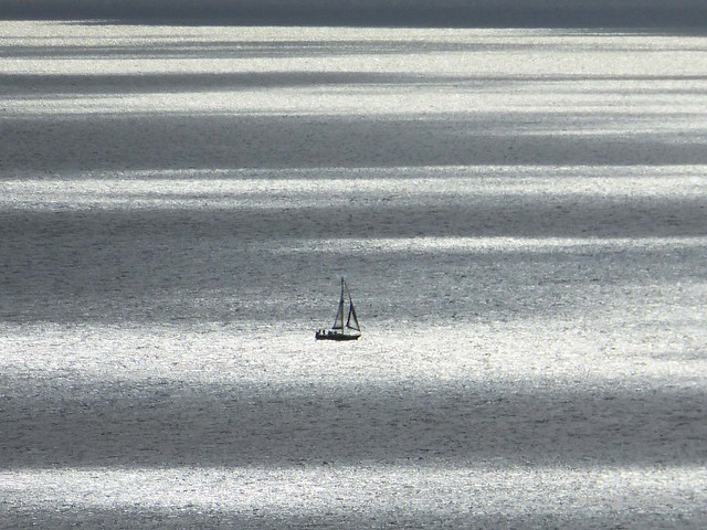 Yacht on Dappled Firth