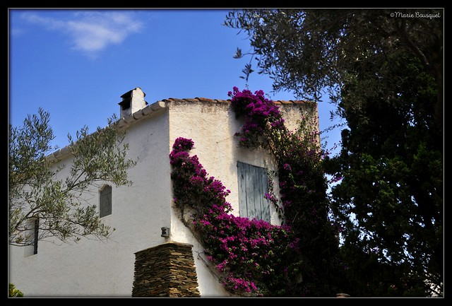 Maison fleurie près de la maison de Dali à Port-Lligat