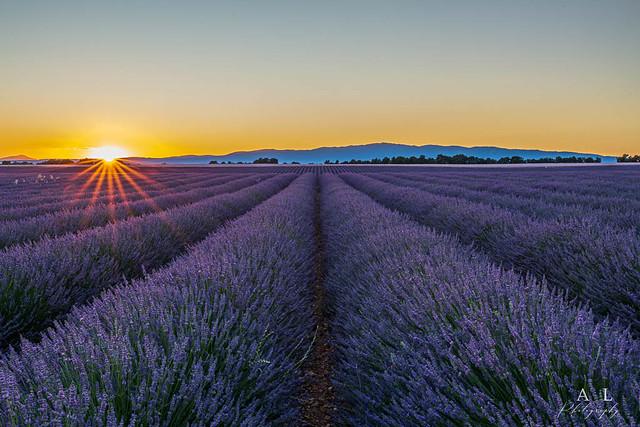 Sunset sur Valensole (04)