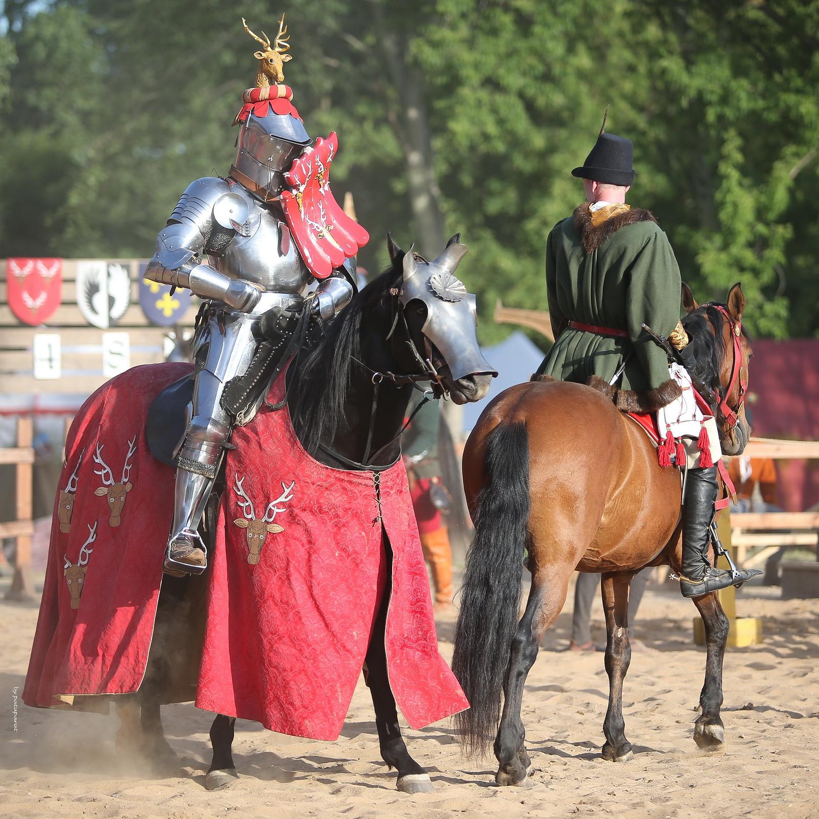 Рыцарь и его оруженосец Untitled