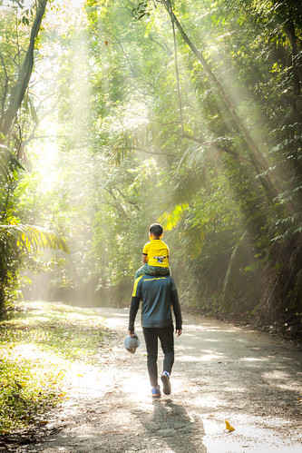 love jungle hiking sunshine ray ipoh malaysia perak kledanghill hill father son sunrise morninghour