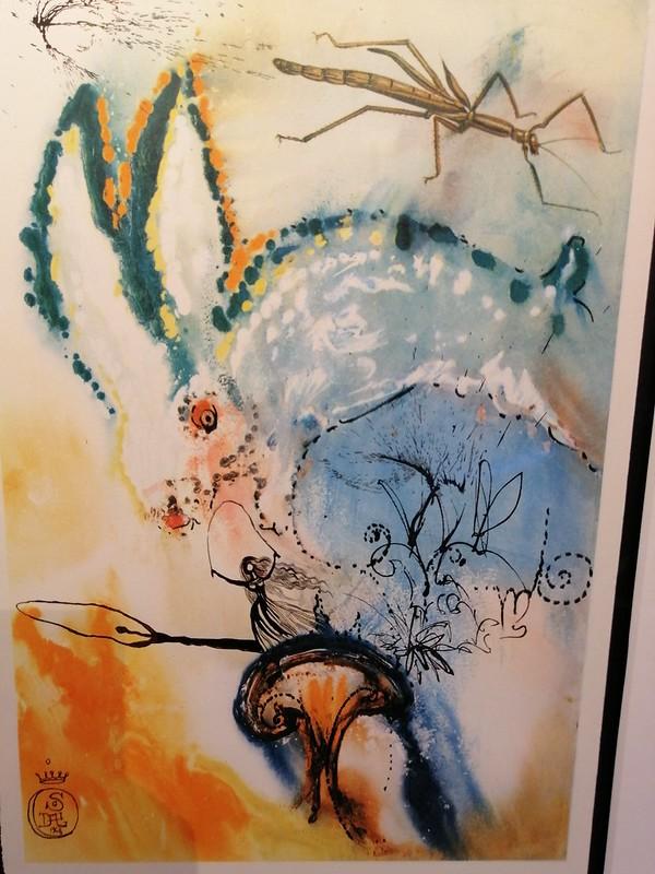 Dalí en Brujas (32)