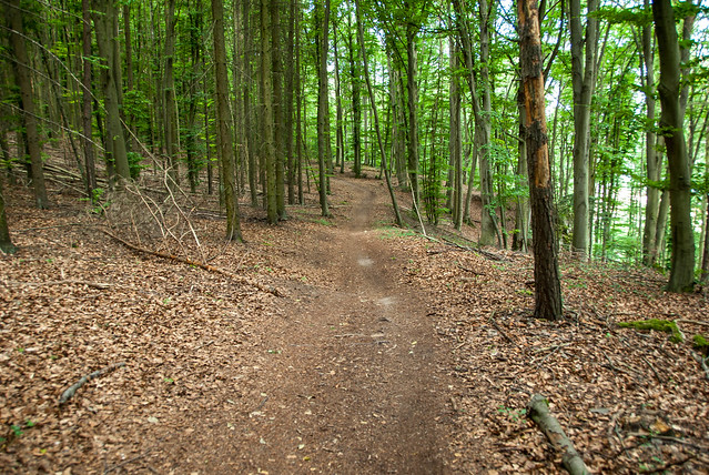 Hiking - Etterzhausen