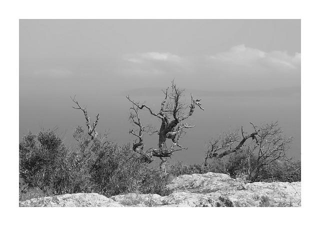Maurenmassiv - Côte d'Azur