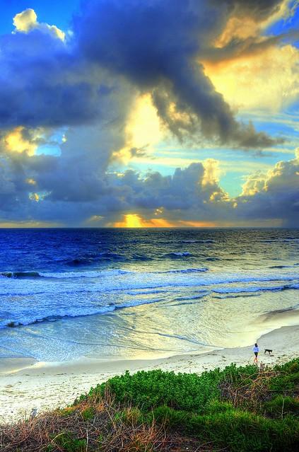leighton-beach_0002_49202284277_o
