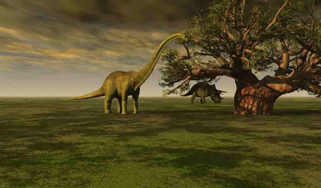 De minuscules mammifères mangeaient les carcasses des dinosaures
