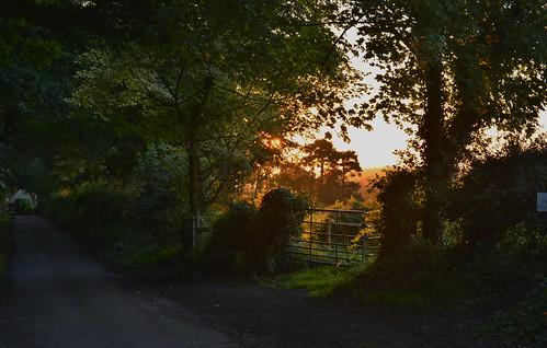 exposureadjusted straightened sunset cheshirewestchester bikeride horsleylane chesterchronicle300720