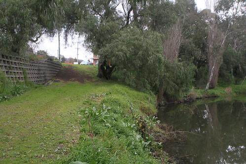 Banks of Kororoit Creek beside Anderson Road in Sunshine