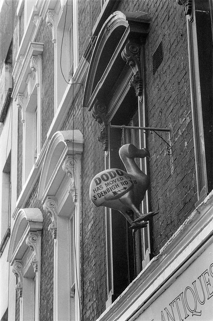Dodo, Westbourne Grove, Notting Hill, Kensington & Chelsea, 1987 87-7f-64-positive_2400