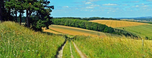 A perfect summer's day, Ham, Wiltshire, England