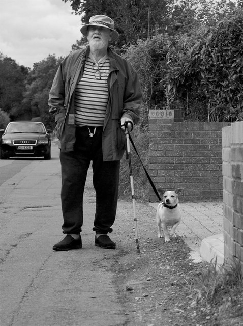 Out walking the dog