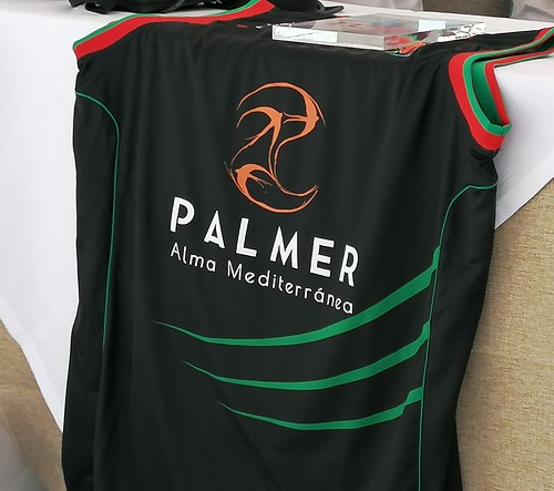 detalle del logotipo de PAlmer en la camiseta