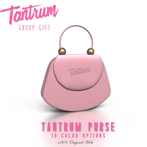 Tantrum Purse Group Gift