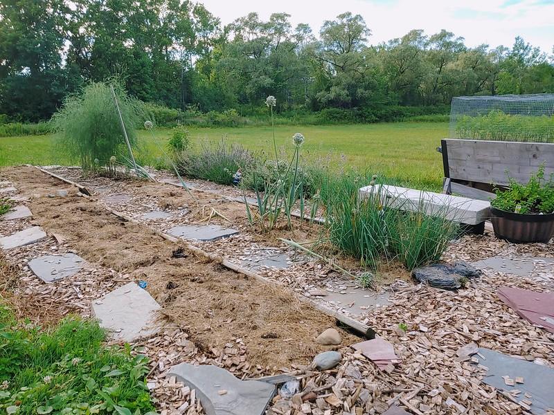 Flower Garden prepped for onion/garlic planting in the autumn