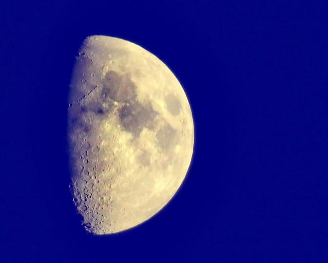Blue Moon                                                            Please read my poem 🌜
