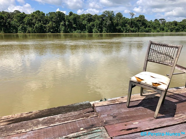 Isolated to fish at the Suriname River, Suriname