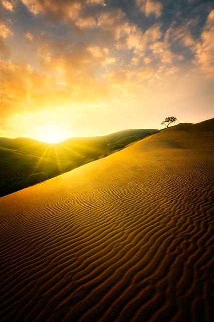 Sand Dunes (Lemnos Island)