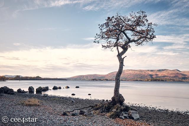 Loch Lomond - Milarrochy Bay