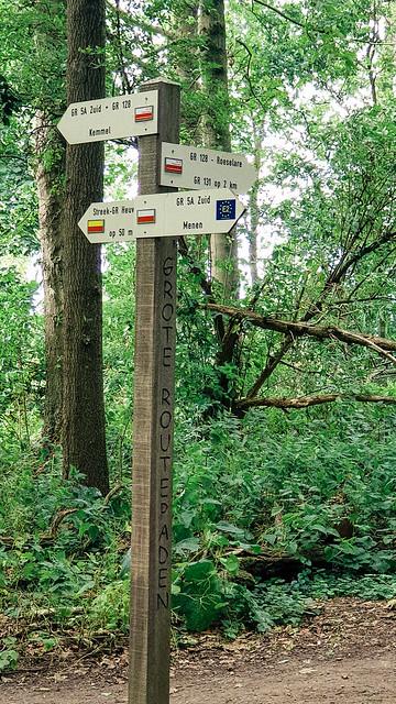 wandelboom Palingbeek