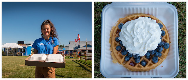 Krause Berry Farms Waffles