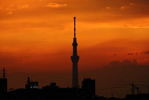 ichikawa chiba japan tokyoskytree sky sunset