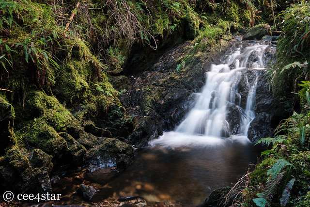 Puck's Glen - Waterfall