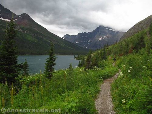 Early views on the North Shore Josephine Lake Trail, Glacier National Park, Montana