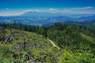 The Radziejowa Trail