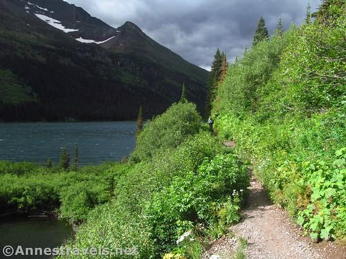 The trail along Lake Josephine, Glacier National Park, Montana