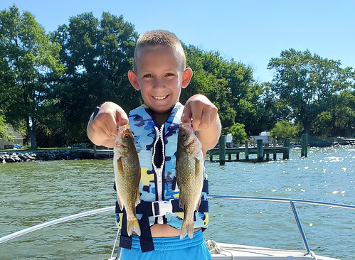 Photo of boy holding two white perch