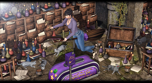 MADPEA - Magical Broom Ride | by Elaine Lectar
