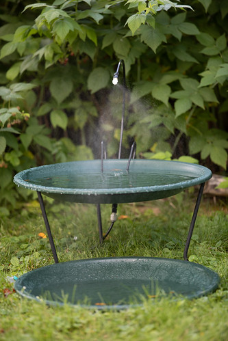 Birdbath with mister and second level