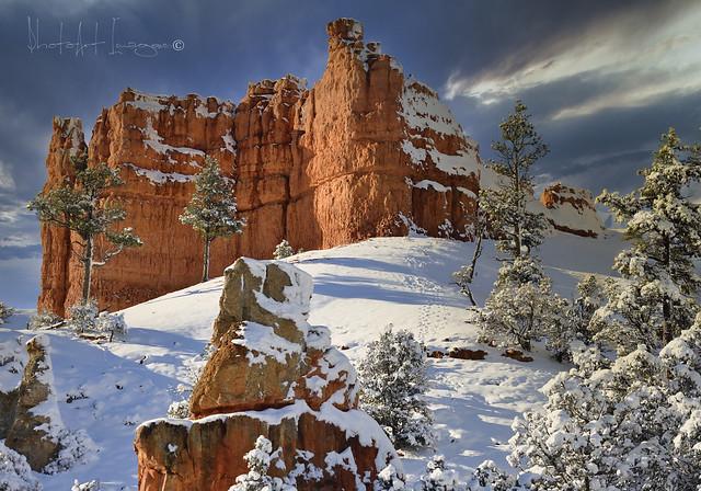 Snow @ the Rock