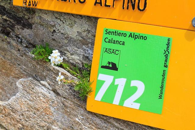 Sentiero Calanca