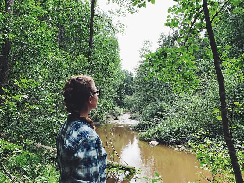 Lemmenlaakson luonnonsuojelualue