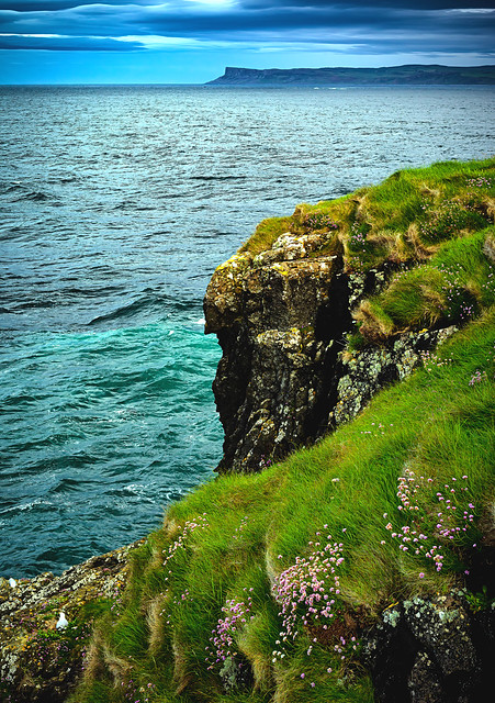 In Explore - Island of Carrick-a-Rede