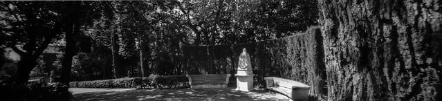 Parc del Laberint. Barcelona. España. Pinhole o estenopeica. Cámara Holga 120WPC modificada para trabajar con película de 135. Formato 24x108. Imagen 4 de 12. 30-07-2020.