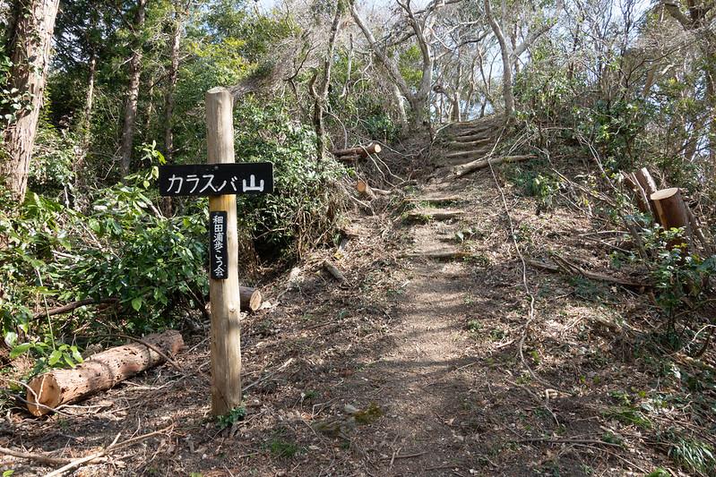 20200224_karasubayama_0319.jpg