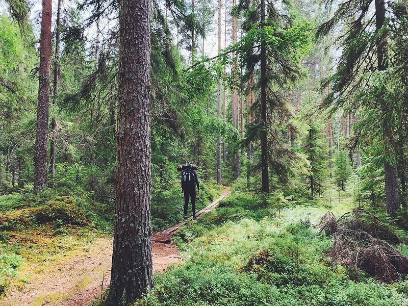 Seitsemisen kansallispuisto