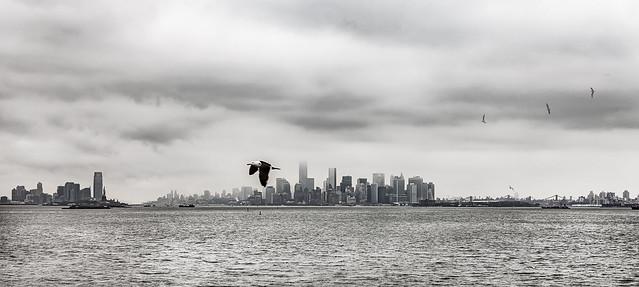 Skyline N.York