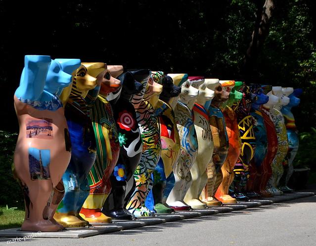 Bären Parade im Tierpark Berlin