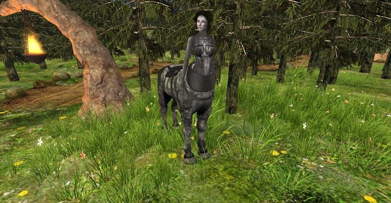 TreeNymphTaur