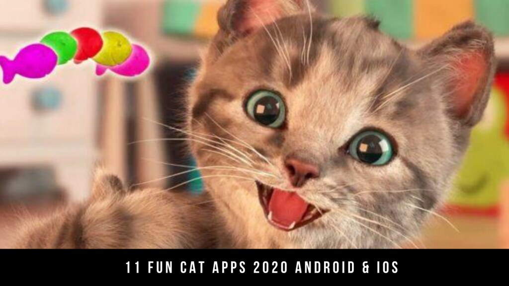11 Fun Cat Apps 2020 Android & iOS
